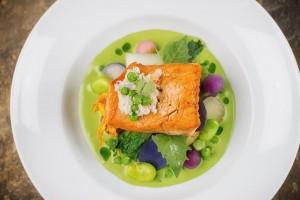 salmon dish take 2